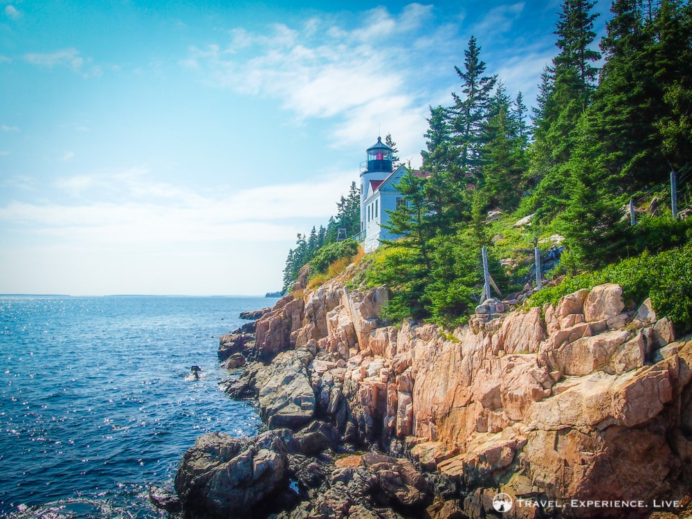 What to Do in Acadia National Park? 5 Suggestions!