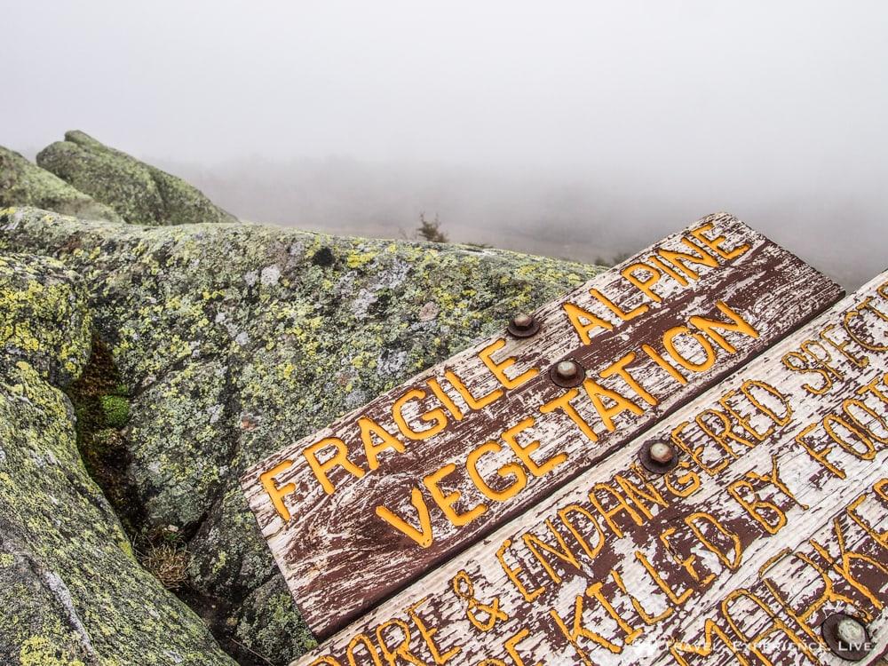 Hiking Mount Moosilauke, New Hampshire