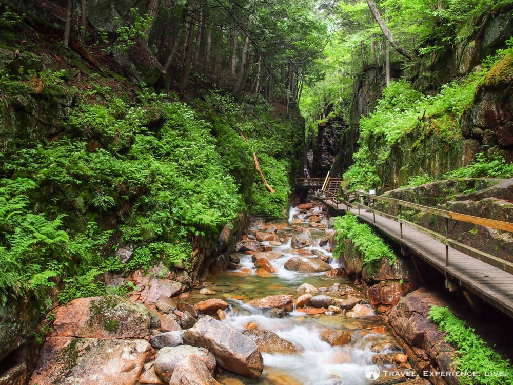 What Not To Miss When Visiting the White Mountains