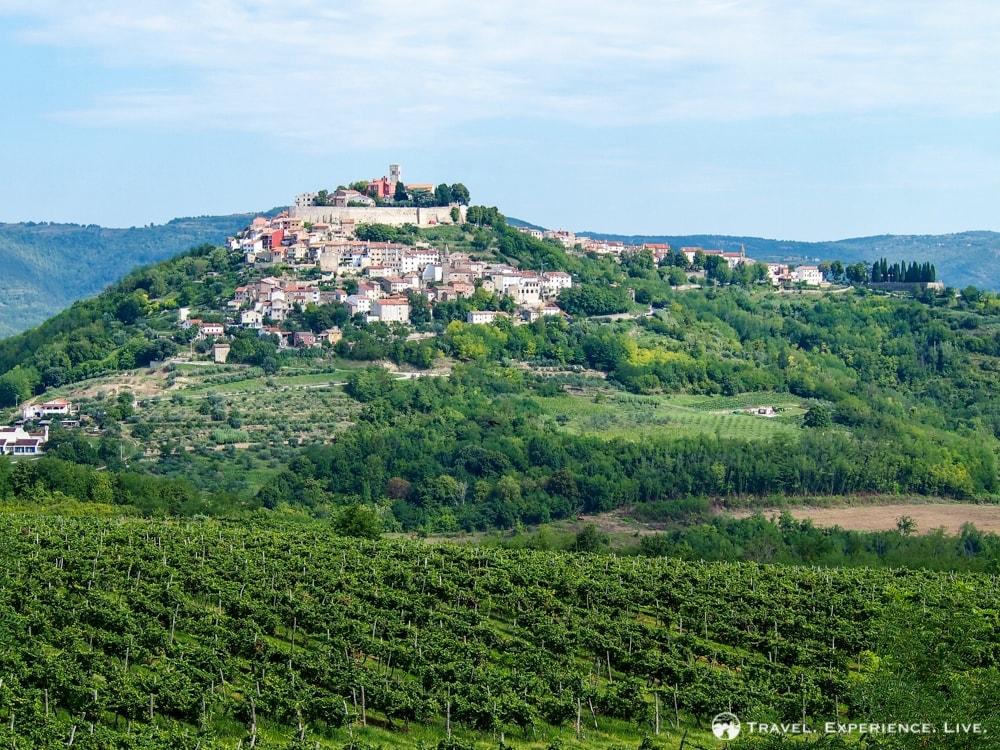 Rovinj & Motovun – Highlights of Istria