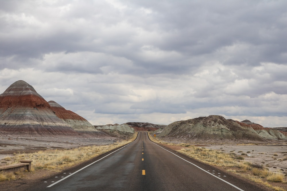 7 Things to Do in Petrified Forest National Park, Arizona