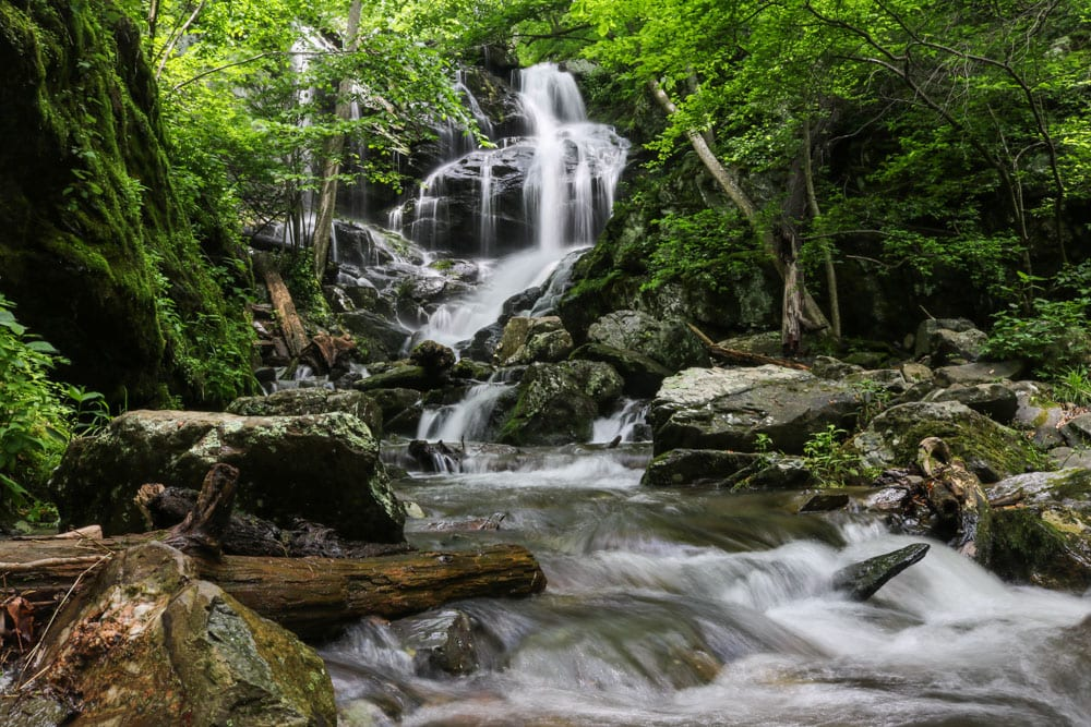 5 Reasons to Visit Shenandoah National Park, Virginia