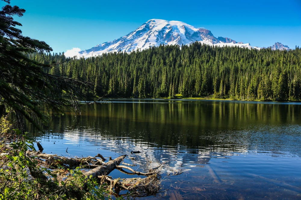 Why Mount Rainier National Park is One of the Best Seattle Day Trips