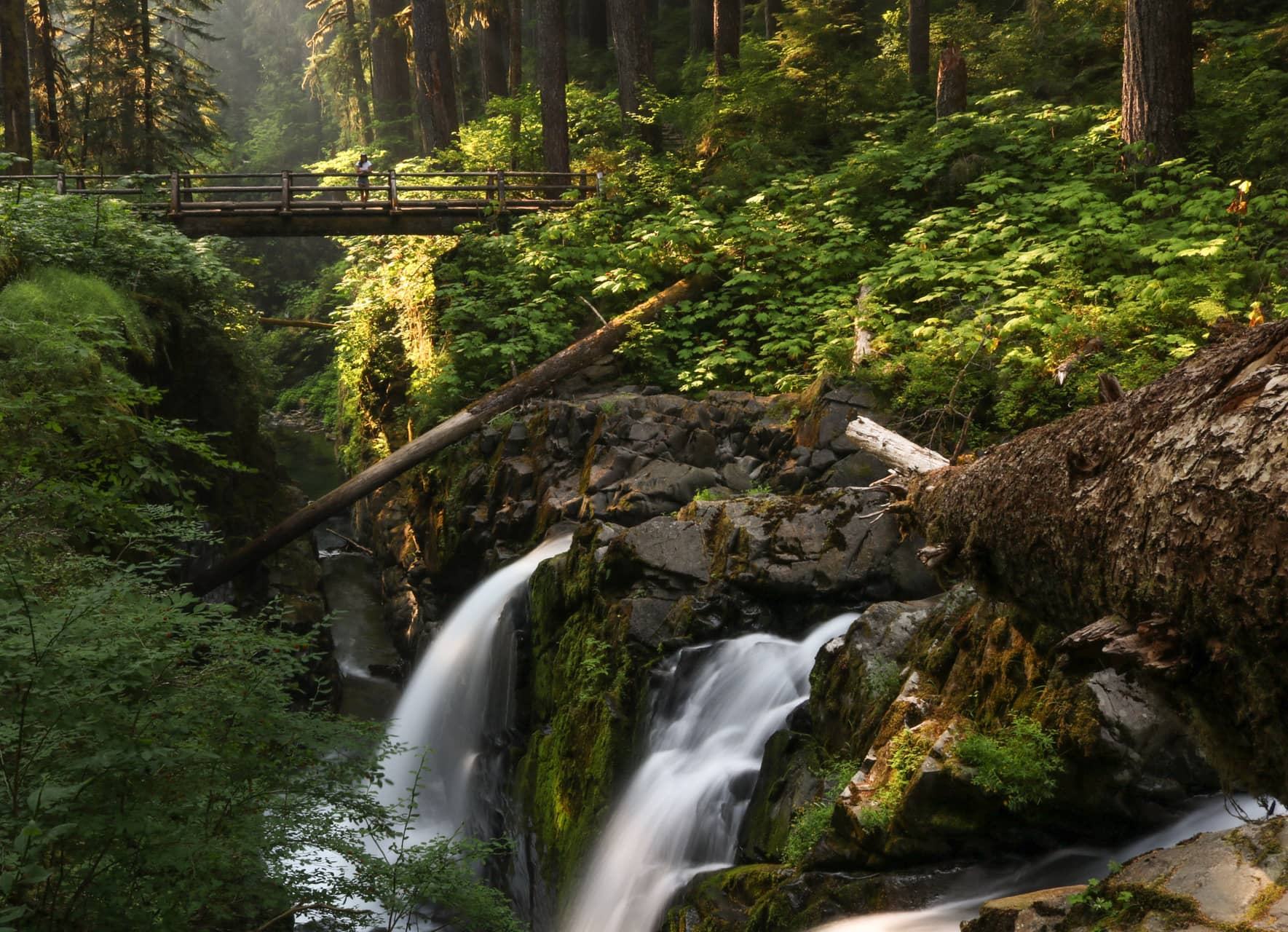 Sol Duc Falls in Olympic National Park, Washington, a beautiful UNESCO World Heritage Site