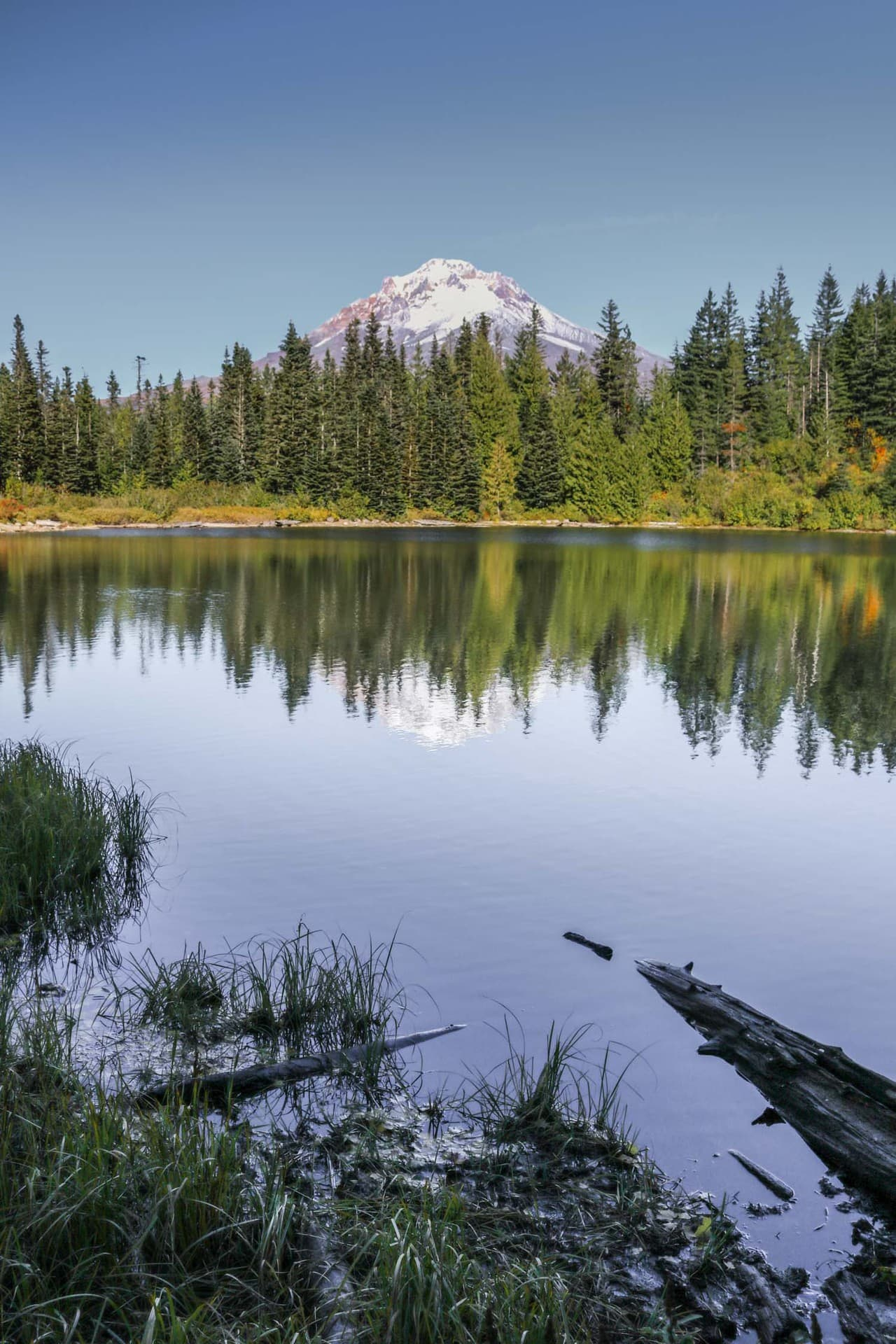 Best Day Trips From Portland For Nature Lovers   Travel  Experience