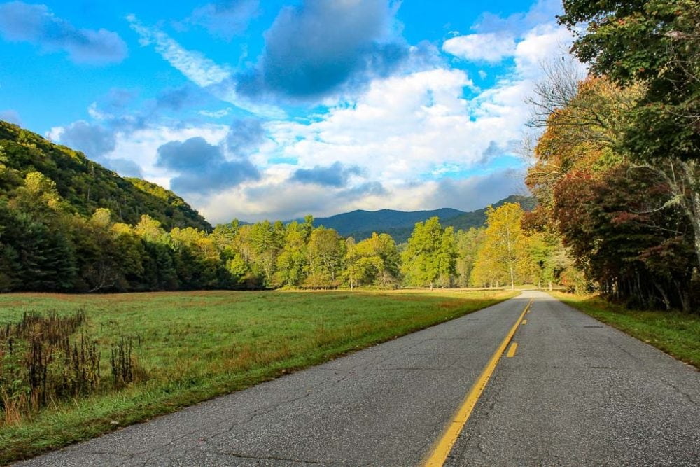 Road in Great Smoky Mountains National Park - Image credit NPS Victoria Stauffenberg